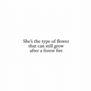 Fire, Flower, and Forest: She's the type of flower  that can still grow  after a forest fire