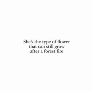 Forest Fire: She's the type of flower  that can still grow  after a forest fire