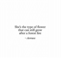 Fire, Flower, and Forest: She's the type of flower  that can still grow  atter a forest fire  -Acrewss