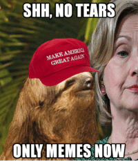 Sent by Greg, a patriot.: SHH, NO TEARS  AGAIN  GREAT ONLY MEMES NOW Sent by Greg, a patriot.