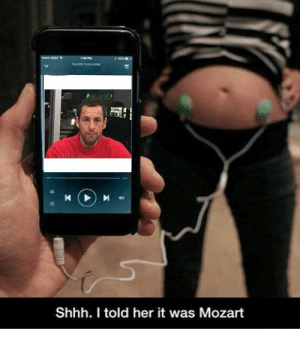 Mozart, Her, and Shhh: Shhh. I told her it was Mozart https://t.co/SYhwiwSa51