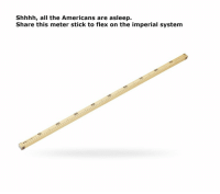 the americans: Shhhh, all the Americans are asleep.  Share this meter stick to flex on the imperial system