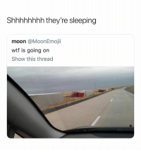 @wittyidiot is one of the few pages on Instagram that are actually worth following: Shhhhhhhh they're sleeping  moon @MoonEmojii  wtf is going on  Show this thread @wittyidiot is one of the few pages on Instagram that are actually worth following