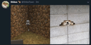 Me_irl by MussoIiniTorteIIini MORE MEMES: Shibes @ShibeTown 3m Me_irl by MussoIiniTorteIIini MORE MEMES