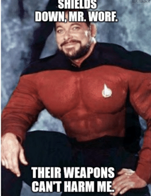Star Trek, Can, and Down: SHIELDS  DOWN MR. WORF.  THEIR WEAPONS  CAN'T HARM ME I, only can protect us