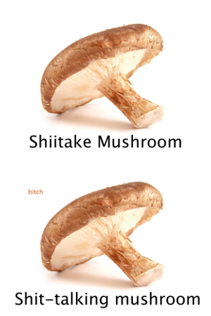Bitch, Shit, and Mushroom: Shiitake Mushroom   bitch  Shit-talking mushroom
