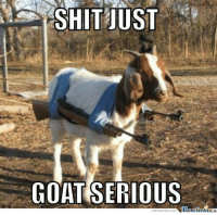 New ISIS fighting strategy.: SHIT JUST  GOAT SERIOUS  Mtmetenler  memecenter-com New ISIS fighting strategy.