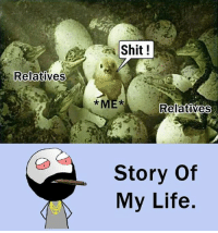 Be Like, Life, and Meme: Shit!  Relatives  ME  RelatiVes  Story Of  My Life Twitter: BLB247 Snapchat : BELIKEBRO.COM belikebro sarcasm meme Follow @be.like.bro