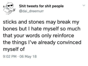 Me irl: Shit tweets for shit people  @dai_dreemurr  sticks and stones may break my  bones but I hate myself so much  that your words only reinforce  the things I've already convinced  myself of  9:02 PM · 06 May 18 Me irl