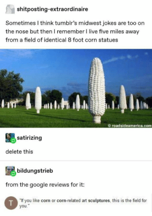 "Google, Jokes, and Live: shitposting-extraordinaire  Sometimes I think tumblr's midwest jokes are too on  the nose but then I remember I live five miles away  from a field of identical 8 foot corn statues  roadsideamerica.com  satirizing  delete this  bildungstrieb  from the google reviews for it:  T""If you like corn or corn-related art sculptures, this is the field for  you."