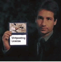Im fully qualified: Shitposting  License Im fully qualified