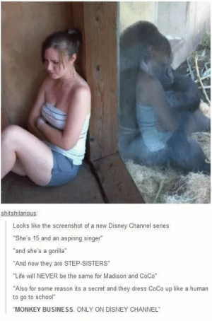 """Monkey Business via /r/funny https://ift.tt/2AlHzkM: shitshilarious  Looks like the screenshot of a new Disney Channel series  She's 15 and an aspiring singer""""  and she's a gorilla""""  """"And now they are STEP-SISTERS  """"Life will NEVER be the same for Madison and CoCo""""  """"Also for some reason its a secret and they dress CoCo up like a human  to go to school""""  MONKEY BUSINESS. ONLY ON DISNEY CHANNEL Monkey Business via /r/funny https://ift.tt/2AlHzkM"""