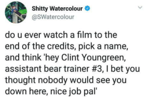 Wholesome movie watching: Shitty Watercolour  @SWatercolour  do u ever watch a film to the  end of the credits, pick a name,  and think'hey Clint Youngreen,  assistant bear trainer #3, I bet you  thought nobody would see you  down here, nice job pal' Wholesome movie watching