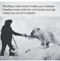 good morning: Shooting a bear doesn't make you a badass.  Feeding a bear while her cub humps your leg  makes you a fuckin badass! good morning