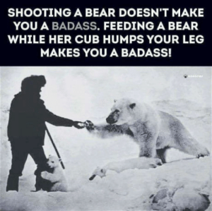 Bear, Definition, and Badass: SHOOTING A BEAR DOESN'T MAKE  YOU A BADASS. FEEDING A BEAR  WHILE HER CUB HUMPS YOUR LEG  MAKES YOU A BADASS! Definition of a badass
