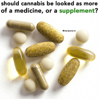 Weed, Marijuana, and Cannabis: should cannabis be looked as more  of a medicine, or a supplement?  @marijuana.tv Thoughts @eatweedlove