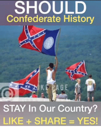 Memes, Patriotic, and History: SHOULD  Confederate History  KEAGE  STAY In Our Country?  LIKE + SHARE = YES! #HeritageNotHate  SPREAD THIS PATRIOTS! Nation In Distress