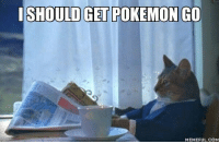 SHOULD GET POKEMON GO  MEMEFUL.COM With everything happening these days, this is all I can think of