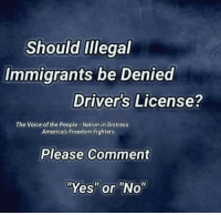"Memes, The Voice, and Voice: Should iIllegal  Immigrants be Denied  Driver's License?  The Voice of the People-Nation in Distress  Americas Freedom Fighters  Please Comment  ""Yes"" or ""No"""