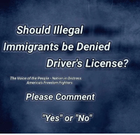 "Memes, The Voice, and Voice: Should Illegal  Immigrants be Denied  Driver's License?  The Voice of the People-Nation in Distress  America's Freedom Fighters  Please Comment  ""Yes"" or ""No"" YES! What do you say? Proud Southern Deplorables via Nation In Distress"