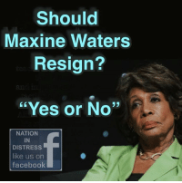 """Facebook, Memes, and 🤖: Should  Maxine Waters  Resign?  """"Yes or No""""  NATION  IN  DISTRESS  like us on  facebook"""