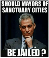 Memes, 🤖, and Sanctuary: SHOULD MAYORS OF  SANCTUARY CITIES  BEJAILED