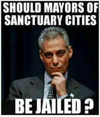 What do you say?: SHOULD MAYORS OF  SANCTUARY CITIES  BEJAILED What do you say?