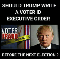 Next Election: SHOULD TRUMP WRITE  A VOTER ID  EXECUTIVE ORDER  RAUD  SCENE C  BEFORE THE NEXT ELECTION ?