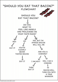 "EAT. THAT. BACON!!!! 🥓: ""SHOULD YOu EAT THAT BACON?""  FLOW CHART  SHOULD YOU  EAT THAT BACON?  DO YOU  WANT TO  FEEL LIKE ANGELS  ARE FROLICKING ON  YOUR TASTE BUDS?  YES, BUT I'M  NO  YES!  AFRAID BACON  WILL KILL ME  EAT IT  YOU'VE  CLEARLY  ARE YOU A  NEVER  COWARD?  TASTED BACON  I AM NOT! YES, I AM A  EAT IT  COWARD  THEN  EAT IT  BACON WILL  TURN you INTO  A TRUE  WARRIOR  Science Love LSD com EAT. THAT. BACON!!!! 🥓"