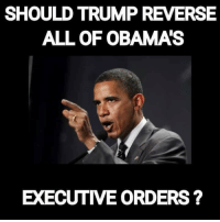 Memes, Wedding, and Treason: SHOULDTRUMP REVERSE  ALL OF OBAMAS  EXECUTIVE ORDERS? I say this is one of the most important actions that #Trump can ever do as our 45th POTUS, what say you... #TrumpPence2016 #MakeAmericaGreatAgain #AmericaFirst #Obama #Treason facebook.com/exposethetruthtoday  We'd like to invite you to the newest member of #TheVoiceFamily guys,Stop by and check it out facebook.com/groups/TVOTPMovement/