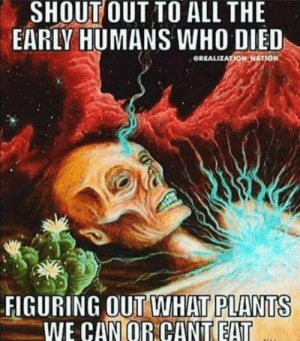 Dank, Memes, and Reddit: SHOUT OUT TO ALL THE  EARLY HUMANS WHO DIED  GREALIZATION NATION  FIGURING OUT WHAT PLANTS  WE CAN OR CANT EAT Shoutout to the adventurous ones by 5trych9 FOLLOW 4 MORE MEMES.