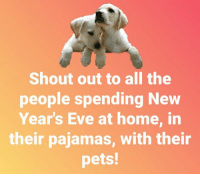 pajama: Shout out to all the  people spending New  Year's Eve at home, in  their pajamas, with their  pets!