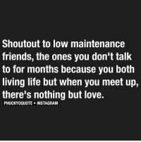 Memes, Lowes, and Shoutouts: Shoutout to low maintenance  friends, the ones you don't talk  to for months because you both  living life but when you meet up,  there's nothing but love.  PHUCKYOQUOTE INSTAGRAM