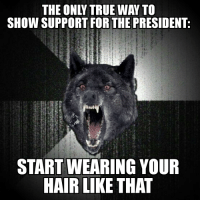 """Insanity, Advice Animals, and Insanity Wolf: SHOW SUPPORT FOR THE PRESIDENT:  STARTWEARING YOUR  HAIR LIKE THAT Submitted: an Insanity Wolf about Trump. Bonus: NOT a """"blast it with piss"""" joke."""