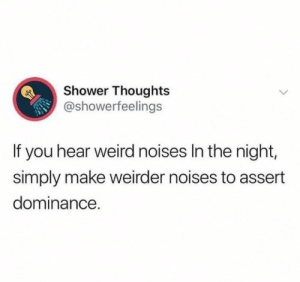 : Shower Thoughts  @showerfeelings  If you hear weird noises In the night,  simply make weirder noises to assert  dominance