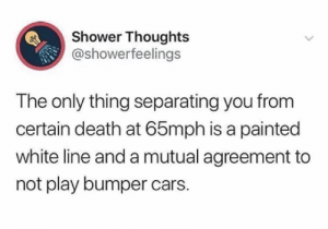 : Shower Thoughts  @showerfeelings  The only thing separating you from  certain death at 65mph is a painted  white line and a mutual agreement to  not play bumper cars.