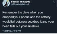 Fall, Phone, and Shower: Shower Thoughts  @TheWeirdWorld  Remember the days when you  dropped your phone and the battery  would fall out, now you drop it and your  heart alls out your arsehole.  11/22/18, 7:02 PM A true point