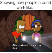 Love, Memes, and Work: Showina new people around  work like...  -This is where I come to cry  -Cool Me 😢😭 Follow my love @thespeckyblonde @thespeckyblonde @thespeckyblonde @thespeckyblonde