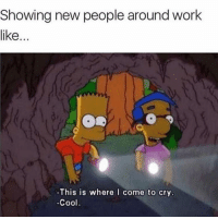 Funny, Work, and Cool: Showing new people around work  like...  0  -This is where come to cry  Cool 😢