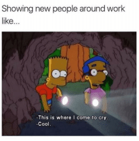 Memes, Work, and Cool: Showing new people around work  like...  d,  This is where I come to cry.  Cool. This is where I spend most of my time 🙃 Follow my bff @thespeckyblonde @thespeckyblonde @thespeckyblonde
