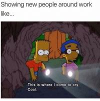 Work, Cool, and Girl Memes: Showing new people around work  like...  -This is where I come to cry  -Cool Susan's dungeon @mybestiesays