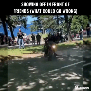Friends, Funny, and Memes: SHOWING OFF IN FRONT OF  FRIENDS (WHAT COULD GO WRONG)  S Stumbler RT @StumblerFunny: For more funny videos follow @StumblerFunny or visit https://t.co/wXxwph26cH https://t.co/jV44ot72bA