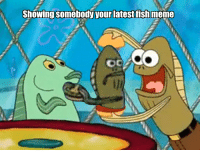 Fred_IRL: Showing somebody your latest fish meme  OC Fred_IRL