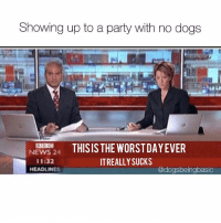 In other news, @drsmashlove is hilarious.: Showing up to a party with no dogs  NEWS24 THISIS THE WORSTDAYEVER  11:32  HEADLINES  IT REALLY SUCKS  @dogsbeingbasic In other news, @drsmashlove is hilarious.