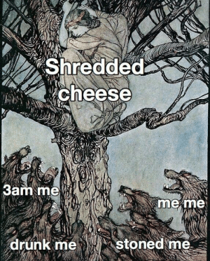 Drunk, Memes, and Tumblr: Shredded  cheese  3am me  me me  stoned me  drunk me More of the best memes at http://mountainmemes.tumblr.com