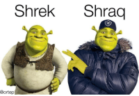 Who would win?: Shrek Shraq  @ortep Who would win?