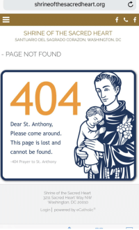 25+ Best St Anthony Memes | Found Memes, Was Memes, You Are