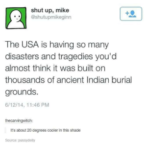 Shade, Shut Up, and Indian: shut up, mike  @shutupmikeginn  The USA is having so many  disasters and tragedies you'd  almost think it was built on  thousands of ancient Indian burial  grounds.  6/12/14, 11:46 PM  thecarvingwitch:  It's about 20 degrees cooler in this shade  Source pussydeity Just chillin' in the shade