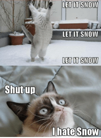 Memes, 🤖, and Let It Snow: Shutup  LET ITSNOIAI  LET IT SNOW  LET IT SNOWI  I hate snow LOL I like it just hate being stuck at home lol