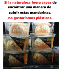 Fresh, Memes, and 🤖: Si la naturaleza fuera capaz de  encontrar una manera de  cubrir estas mandarinas,  no gastaríamos plásticos.  RIGHT  RIGHT  FRESH  FRESH z  RIGHT  FRESH  FRESH Que injusticia.